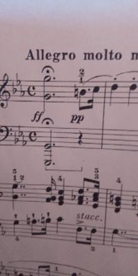 シューベルトの即興曲op.90-1の冒頭のソの音はどれくらいのばしますか?YouTubeでツィメルマンの演奏をきいたところ、冒頭のソの音はかなり長くのばしていました。