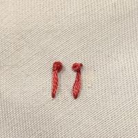 フランス刺繍にて、 ストレートの先にフレンチノットをする、 ステッチの名前はわかりますか? 針に糸を巻いて、離れた場所に刺すやり方です。 写真左手です。   写真右手はストレートと フレンチノットです。