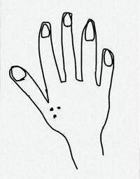 なんでヤンキーって親指の付け根とかにドラゴンボールの三星球みたいな点々の刺青?タトュー?入れてるんですか?ヤンキー文化知らない身としてはパッチテストそこにしちゃったんですか?くらいにしか思えず、どう考 えてもかっこい!!とは思えないのですが、ヤンキーは次々と指の付け根に三星球を入れていきます。 彼らの怒りの沸点が分からないので、ダサくね?と言うことも、何故それを入れたのかも聞けないので、わか...