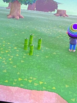 竹の離島 あつ森