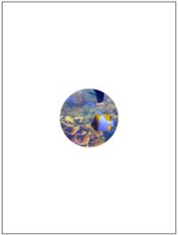 画像を読み込み,中心座標から半径100画素以上離れた場合に白色にして下さい。 (画像の中心座標を求める -src_img.cols: 幅 -src_img.rows: 高さ )(距離が閾値以上の場合は白色, 閾値未満は入力画像の画素値を入...