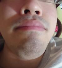 髭 剃る と 濃く なる