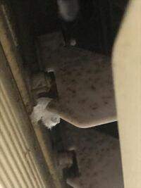 エアコンの写真です これはカビですか?カビでしたら酷い状態でしょうか?