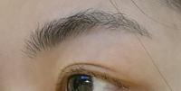 眉毛を切ったのですが、目尻の方が薄くなってしまいぼさぼさになってしまいました。学校で眉毛を書くことができないので、どう整えたらいいと思いますか?