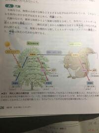 生物基礎  学校では、光合成の過程でATPが作られる、 と習いましたが、写真にあるように、教科書では、独立栄養生物も従属栄養生物も、呼吸のところで、 ATPが作られているように見えますが、どういうことでしょうか