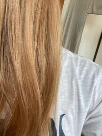 ヘアカラーについて この髪のトーンレベルを教えてください 自然光で撮った写真です。 写真なので正確な色では無いと思いますが、だいたいのトーンレベルを教えてください!