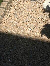 庭石の種類について この写真の庭石を買い足したいのですが、ネットなどで見ても色々ありすぎてよく分かりません。  何という種類の石かお分かりの方、いらっしゃいませんか?