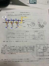 オルタネータのレクチファイア?部分の回路について教えて下さい。 エンジン始動しステータコイルで 発電された電流(黄色い線)はプラス側の 整流ダイオードで直流になりB端子へ流れる… であってますでしょうか? ...