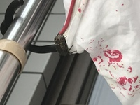 洗濯物についてるこの虫、なにかわかりますか? 見えにくくてすみません。 結構大きくてびっくりしました。 虫がとても苦手で… 洗濯物取り込めず、泣く泣く放置しています。