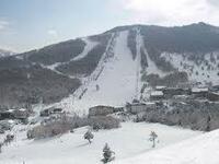 志賀高原スキー場についてお聞きします。  丸池や一ノ瀬ファミリーもそうですが、急斜面から緩斜面(平地)に変化する時、注意の看板かなだらかに変化するようにコースを変更できませんか。 急斜面を滑るときは...