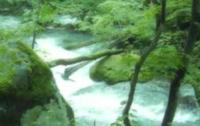 【川のせせらぎを連想する曲】  貼付した画像はネットで見つけたのですが  このような  川のせせらぎを連想する曲はありますか?