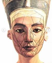 黄金比マスクに合うと美しいって言ってるけどこれのどこが美しいん?