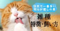 雑種の猫や犬は、純血種より知能などが低めになるのですか? 猫や犬には様々な純血種(血統書付き)がいますよね。 ですが、日本の猫などはおよそ80パーセントはすでに混血化が進んだ雑種であるそうです。  そ...