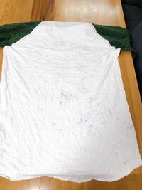 Tシャツを洗濯したら何かが色移りしてしまったのですが落とす方法はありますでしょうか。