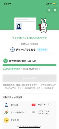 LINE PAYでこれまでいくらのマイナポイントが付与されたか(5000ポイントまで残り何ポイントか)どうやって確認しますか? PayPayであれば、獲得した分の確認できますが、LINE PAYはないようです。