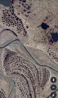 ※集合体恐怖症の方注意 ロシア北部の湿地帯の模様について 写真のような地形になる理由わかる方います? 地面が凍結と融解を繰り返すことによって あんな感じになるのかしら?