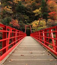 鳥取県のどこかなのですが正確な場所わかりますか?