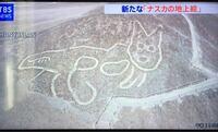 【本物?】新たなナスカの地上絵が見つかったみたいですけど・・。この「猫」の絵、怪しくないですか?? 明らかに、他の地上絵よりも芸術性に劣ると思います。 誰かがミステリーサークル的に作ったとしか思えま...
