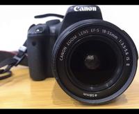 Vリーグバレーボール女子の試合でカメラでの撮影をしたいのですがCanon EOS kiss ×4 セットで撮影しても結構良い写りで撮影できますか?? 18-55mmと75-300mmと言うのがついています カメラの知識が全然ないので文...