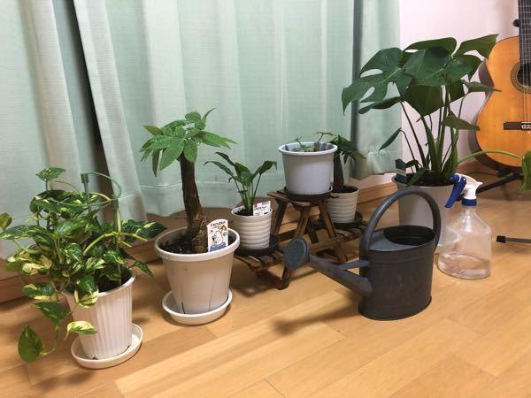 写真のような感じで部屋に観葉植物を置いて育てているんですが、なんか場所だけとってしまってあまりおしゃれじゃないんですが、なんかうまくする方法ないですかね?