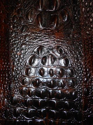 この画像の革はカイマンの皮でしょうか、型押しでしょうか?
