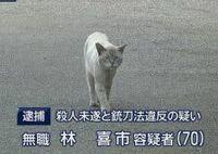 現在の日本の副総理大臣は誰ですか?