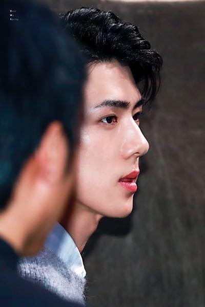 EXOでセフンさんがかっこいいなと思ってKPOP好きの他グルペンの友達にオススメしたところ、おでこと鼻が明らかに整形だと言われたんですが、本当でしょうか?確かにナチュラルでこんな鼻高い人やおでこ...