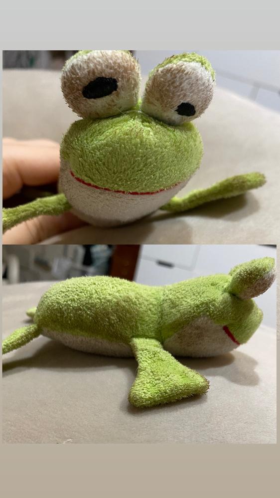 犬のおもちゃの、カエルの人形です。 昔どこかで買ったのですが、どうしても思い出せなくて どこかに売ってたり、知ってる方はいらっしゃいますか?? 汚くてすみません。