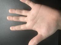 これは私の手のひらなんですが、生命線って、どれですか?