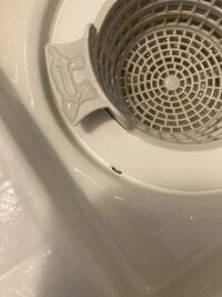 お風呂場の排水溝のパッキンが剥がれてます、早急に処置しないといけない箇所ですか?