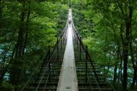 登山中、トイレに行きたくなり、山道の分岐点でトイレの案内板を見つけて道をたどったらこの吊り橋がありました。 あなたは渡りますか? 吊り橋の向こうには綺麗な公衆トイレがあります
