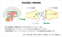 統合失調症を病気とする生理的根拠が なく、 診断基準にも、生理現象の計測が 何ひとつ規定されていないにも かかわらずに、 強制監禁強制投薬による治療が、 世界中で実行されているのは、 なぜですか。  世界一治安の良い日本は、 統合失調症の薬物療法を、 世界に普及しましたか。  ノーベル賞のロボトミーと、 日本の抗精神病薬強制投与は、 何が違いますか。