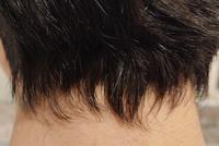 センター分けでこの襟足ってヤバいですよね?(センター分けじゃ無くとも) 母親に聞いてみたら「そんなにヤバくない。」と言ってましたけど、やっぱりヤバいんじゃないかと思い質問させて頂きました。髪切りに行くのが面倒で2ヶ月近く行ってませんでしたが、ふと後ろの方の髪が気になり撮影してみた所この有様。皆さんはどう思いますか?