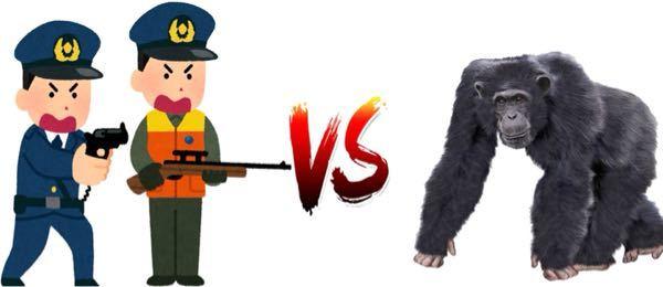 ブルーノ事件を聞いて思ったのですが...結局....人間軍団と猿軍団は戦ったらどっちの勝ちになるのですか!? 教えて下さいお願いします!!