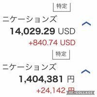 株初心者です。 楽天証券で米国株取引をはじめました。 円貨と外貨でこう表示されてるのですがこれはどういう意味なのでしょうか?