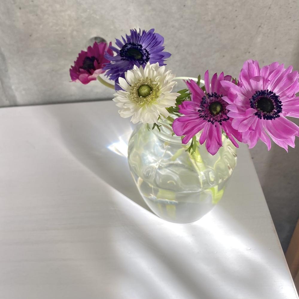 この花の名前をど忘れしてしまいました。 どなたか教えてください。