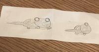 なんの生き物か教えて下さい。 先日道路を横切る、大きなカエルに長いしっぽが生えたような生き物を見ました。大きさはこぶし1つ分の頭・体に、それと同じくらいの長さの細いしっぽが付いているような感じです。  4足歩行でゆっくりノソノソとワニのような動き方をしていました。 一見オオサンショウウオとかムツゴロウみたいな印象を受けましたが、もっと急にしっぽが細くなる感じです。  近くに川や溜池が...