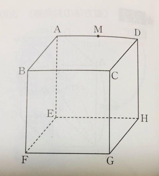 一辺の長さが8㎝の立方体で、辺ADの中点がMです。 MFの長さを求める場合、 AM二乗+AF二乗=MF二乗 ですよね? 解説では、AM二乗+AB二乗+BF二乗 になっていて、 なぜABとBFを...