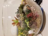 多肉植物の水やりについて。 写真のようにボール型の器に寄せ植えされている多肉植物を購入したのですが、水やりは月1程度葉にかからないように、根元部分に少しやる位でいいのでしょうか?