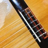 ピックアップのノイズについて。  クラシックギターにフィッシュマンのピックアップを取り付けました。 買った当初付いていたものが鳴らなくなってしまったのでAmazonで同じ形状の物を購入しました。 ブリッジの部分に紐状のものを通してナットで止める形です。 取り付けは出来たのですが、6弦だけ弦の切れ端が触っているようなジーというノイズがするのと、たまにバチッと音が鳴って全て音が出なくなっ...