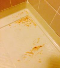 この浴槽の床のオレンジのシミはハイドロハイターで落ちますか? 赤カビ長期間放置した結果、一部だけオレンジ色のシミがプラスチック製の浴槽の床面にできました 大半はメラミンスポンジでとれたのですが、キッチンハイターで湿布してもとれません ハイドロハイターで落ちますか?