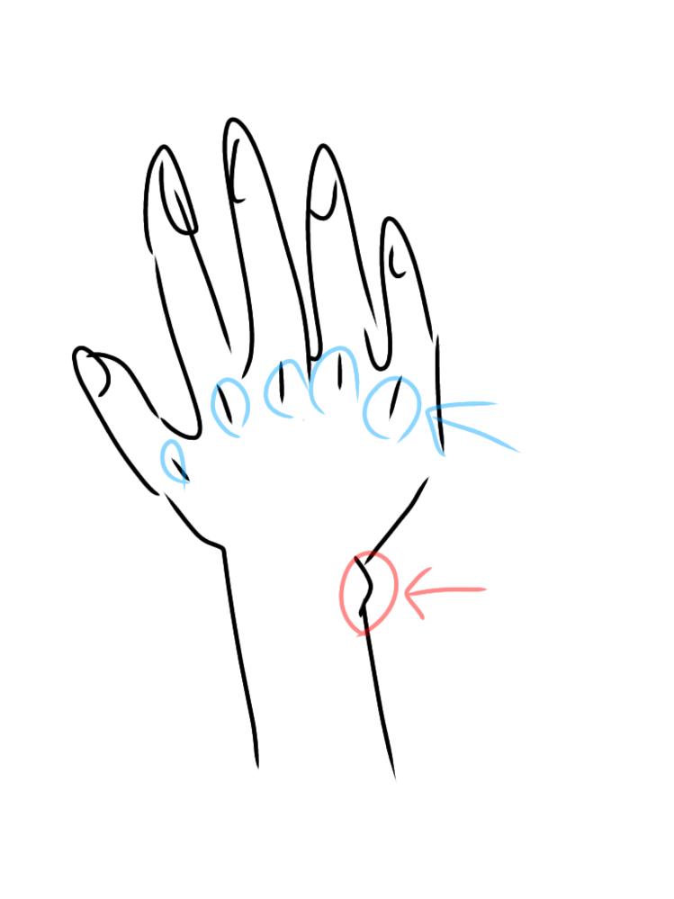 雑なので伝わりにくいかもしれませんが、画像絵の右手の青と赤の丸の部分って名前ありますか?あれば教えていただきたいです。