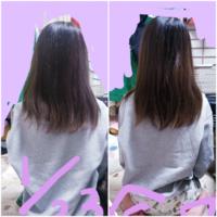 髪の毛伸びるの早いとよく言われるのですが 早いのでしょうか?? 左が1月23日の長さで右が今日です。