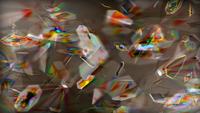現代アートに詳しい方教えてください。 トーマス・ルフのフォトグラム作品はどのようなコンセプト・どのような行程で作られているのでしょうか?  http://thomasruff.jp/works/16_photogram/