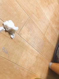 お洗濯物の脱水時間を間違えてしまい洗濯物の水分と漂白剤が床に落ちていてシミになってしまいました(;_;) 白い部分を爪で削るとボロボロ禿げるので恐らくワックス剤が溶けたんだと思います…。 ワックスをかけ直そうと思うのですが、その場合このボロボロ出るものを取ってからかけた方がいいですか?( ̄▽ ̄;)