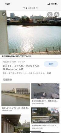 福岡県で何年も前、こげんたちゃんという猫ちゃんがしっぽや手足、耳など切断され他にも色々虐待され、殺されてしまった事件があります。福岡県での事件ですが、最後亡くなってしまったこげんたちゃんを犯人は川に捨 てたのですが、福岡県の何川かおわかりの方いらっしゃいますか??  福岡へ引っ越してきたため興味本位などではなく、お花やご飯などをお供えに行きたいのですが何という川だったのか思い出せません。 ※...