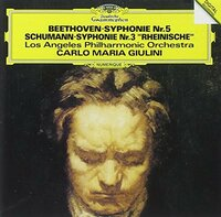 ベートーヴェン交響曲第5番「運命」が最近は全体がなかなか良いと思えるようになってきたのですが、 この曲の良さや特徴はどのような所だと思いますでしょうか。私は全楽章が良いと思います。