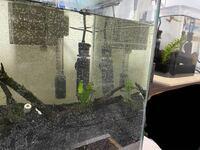コイン50枚 コトブキ30センチキューブ水槽について  水槽を大きくしようとコトブキの30センチキューブ水槽をAmazonにて買いました。 本日水槽を立ち上げたのですが 今まで使ってた水槽(樹脂水槽)にくらべ 水が薄緑に見えるほどガラスが緑がかってるようにまえます。 これはコトブキ水槽すべてこんなものでしょうか? それともこの水槽だけ?(そんなことはないとおもいますが)  今までの水槽を見な...