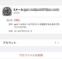 auのpovoを契約しました。 設定→一般→プロファイル→Eメール から見れるこれ(画像)って消した方が良いのでしょうか? (元々auの別プランに入っていてその時のEメールアカウントです。)