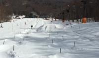 今日、八千穂高原スキー場に行ってきました。 緩斜面の簡単なコブですが、何度も滑っていればうまくなるでしょうか?